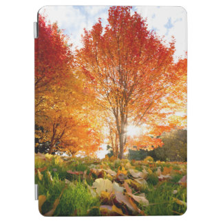 Autumn Trees iPad Air Cover