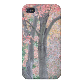 Autumn Trees iPhone 4/4S Cover