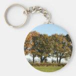 Autumn trees key chain
