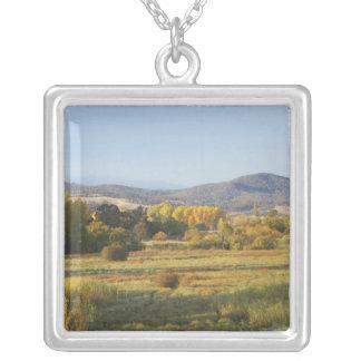 Autumn Trees, Khancoban, Snowy Mountains, New Necklaces