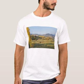 Autumn Trees, Khancoban, Snowy Mountains, New T-Shirt