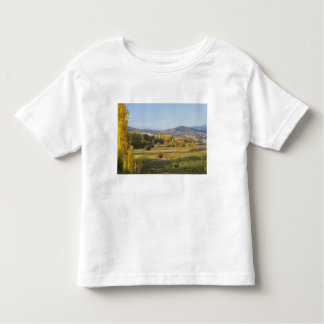 Autumn Trees, Khancoban, Snowy Mountains, New Toddler T-shirt