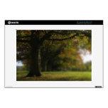 """Autumn Trees Landscape 13"""" Laptop Decal"""