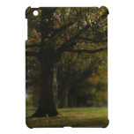 Autumn Trees Landscape Cover For The iPad Mini