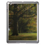 Autumn Trees Landscape iPad Cases