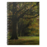 Autumn Trees Landscape Spiral Note Book
