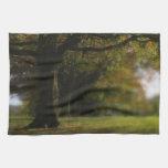 Autumn Trees Landscape Towel