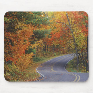 Autumn trees line roadway in Itasca State Park Mouse Pad