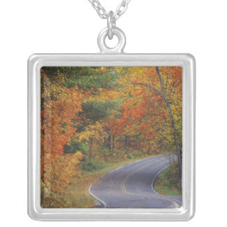 Autumn trees line roadway in Itasca State Park Silver Plated Necklace
