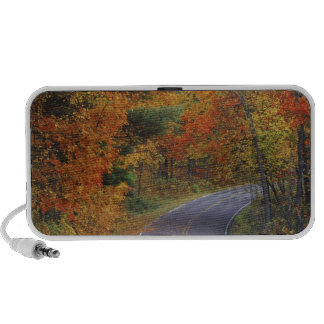 Autumn trees line roadway in Itasca State Park Speakers