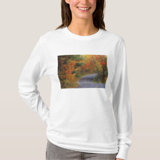 Autumn trees line roadway in Itasca State Park T-Shirt