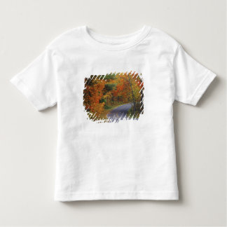 Autumn trees line roadway in Itasca State Park Toddler T-shirt