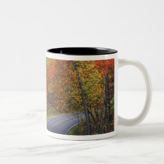 Autumn trees line roadway in Itasca State Park Two-Tone Coffee Mug