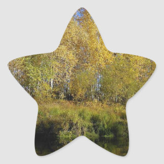 AUTUMN TREES MIRRORED IN WATER STAR STICKER