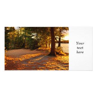 Autumn trees near lake photo card template