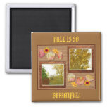Autumn trees on a wall collage magnet