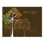 Autumn Trees on Brown Thank You Postcard
