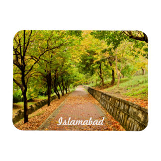 Autumn Trees Rectangular Photo Magnet