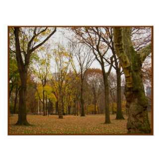 Autumn Trees Print New York Landscape Poster