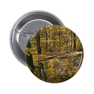 Autumn trees standing in water buttons