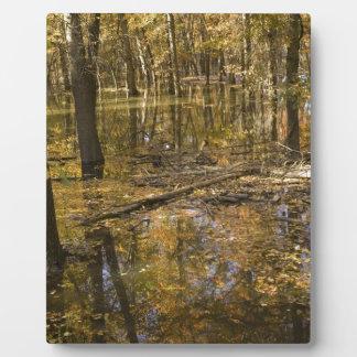 AUTUMN TREES STANDING IN WATER PLAQUE