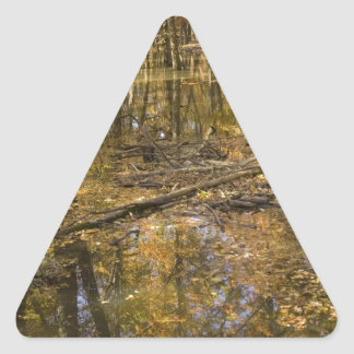 AUTUMN TREES STANDING IN WATER TRIANGLE STICKER