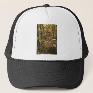 AUTUMN TREES STANDING IN WATER TRUCKER HAT