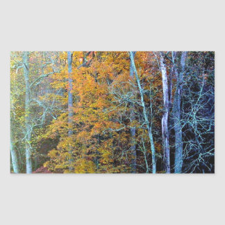 Autumn trees rectangular sticker