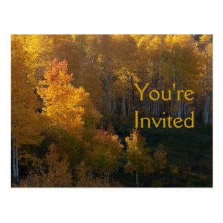 Autumn Trees Thanksgiving Dinner Invitation Postcard