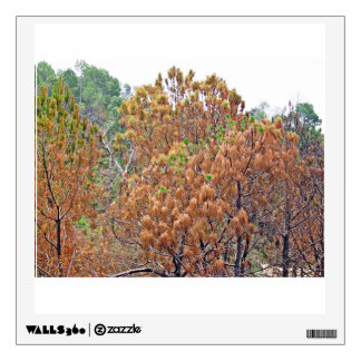 Autumn Trees Wall Sticker