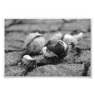 Autumn under feet photo print