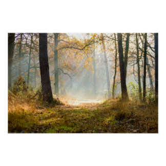 Autumn - V - poster