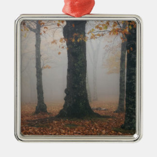 Autumn view of foggy forest, Grandfather 2 Metal Ornament