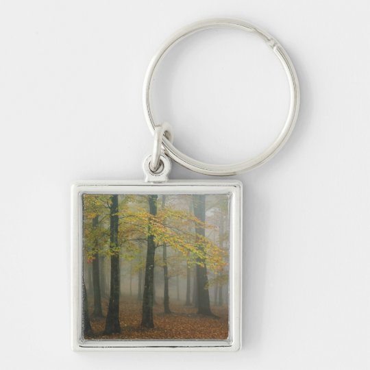 Autumn view of foggy forest, Grandfather 3 Keychain