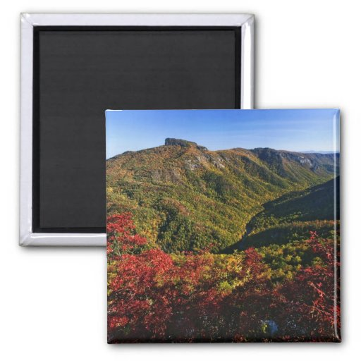 Autumn view of Linville Gorge often called the 2 Inch Square Magnet