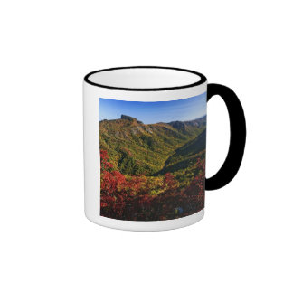 Autumn view of Linville Gorge often called the Coffee Mugs