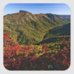 Autumn view of Linville Gorge often called the Square Sticker