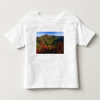 Autumn view of Linville Gorge often called the T-shirts