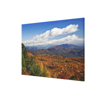 Autumn view of Southern Appalachian Mountains Canvas Print