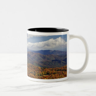 Autumn view of Southern Appalachian Mountains Mug