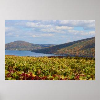 Autumn Vineyard. 1 Poster