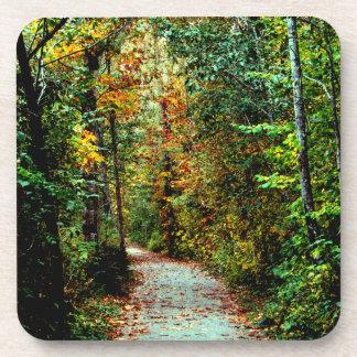Autumn Walk Coaster