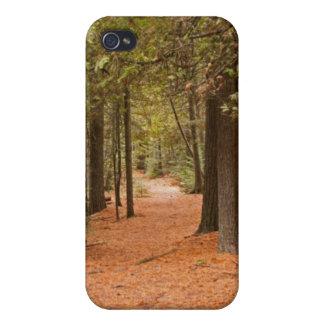 Autumn Walk iPhone 4 Cover