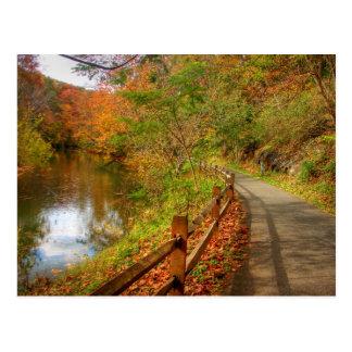 Autumn Walk Lynchburg City Trails Postcard