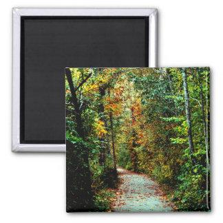 Autumn Walk 2 Inch Square Magnet