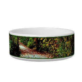 Autumn Walk Pet Water Bowls