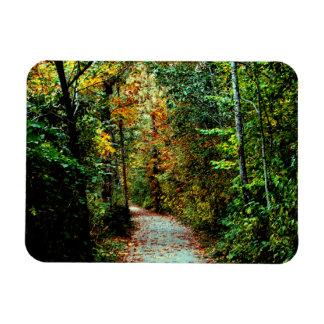 Autumn Walk Rectangular Photo Magnet