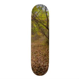Autumn Walkway Skateboard Deck