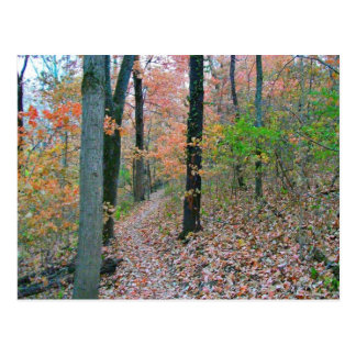Autumn Was Meant For Hiking Postcard