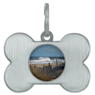 Autumn Waves and Dunes at the Beach Pet Tag
